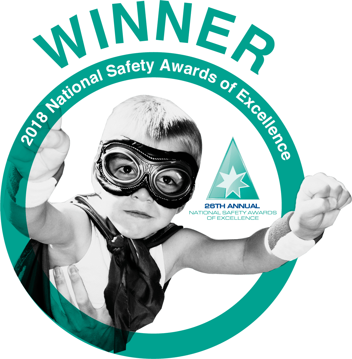 national safety award winners